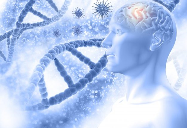 3d-medical-background-with-a-male-figure-with-brain-and-virus-cells_1048-5871