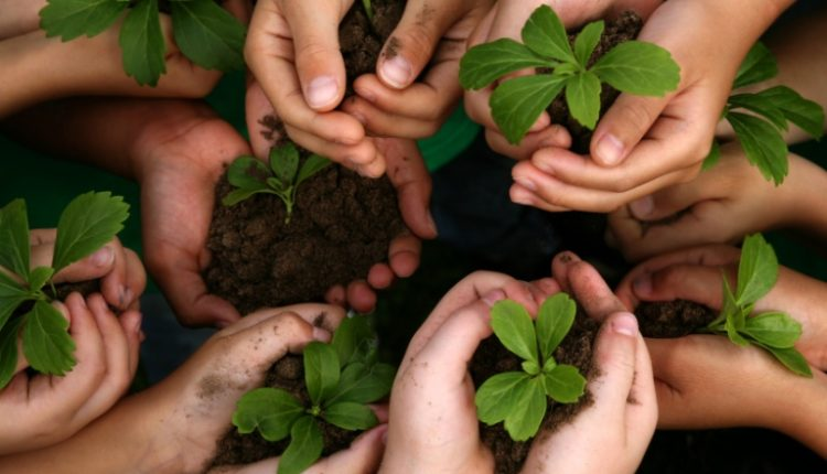 go green – save the environment